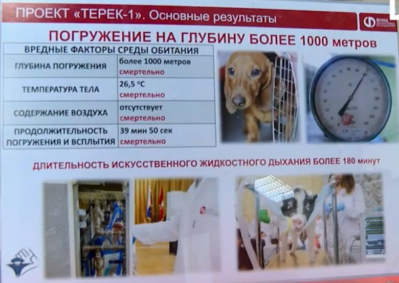 Андрей Филиппенко из РАЕН изобрёл технологию дыхания в жидкости из фторуглерода - 1