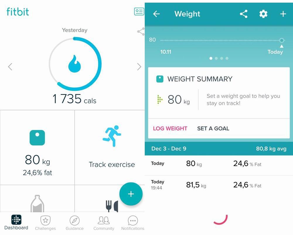 Сравнительный обзор весов. Личный опыт и тесты на себе - 9