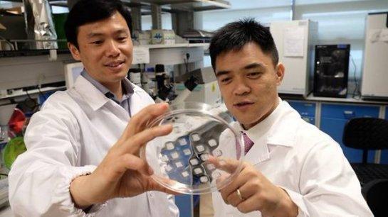 Ученые изобрели пластырь от ожирения