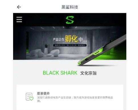 Xiaomi работает над игровым смартфоном Black Shark