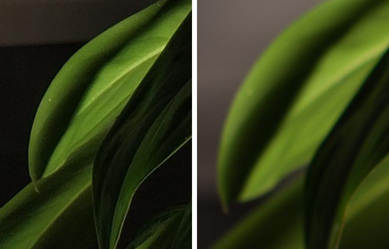 Честное сравнение камеры телефона и зеркального фотоаппарата - 4