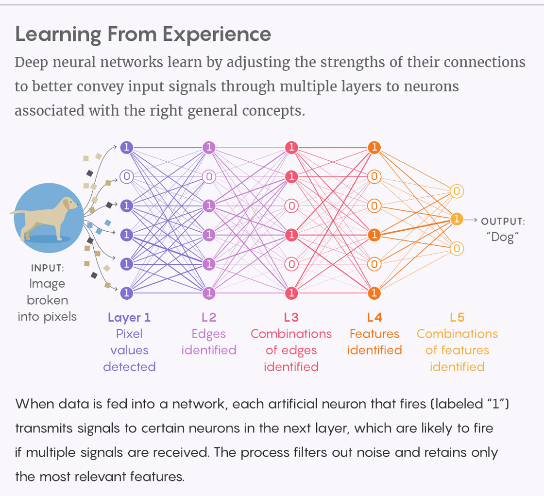 Первостепенная задача квантовых компьютеров – усиление искусственного интеллекта - 2