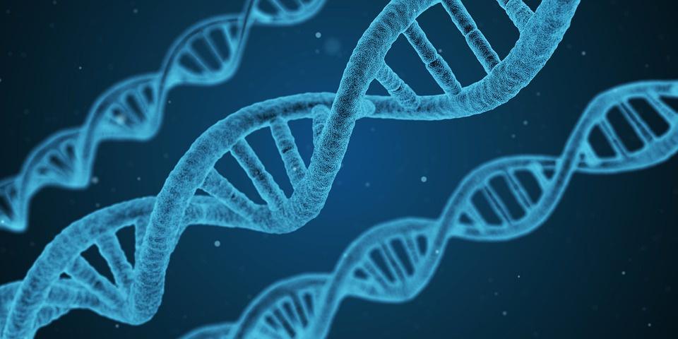 Новое интервью с Гари Хадсоном: разработка технологий для борьбы со старением, раком и иными заболеваниями - 1