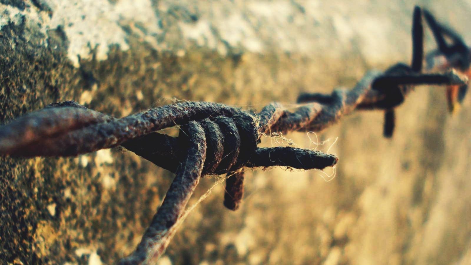 Как фермеры Дикого Запада организовали телефонную сеть на колючей проволоке - 1