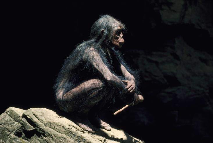 Палка: невоспетый герой эволюции человека - 3