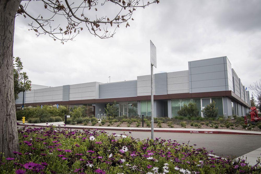 Apple впервые сама разрабатывает дисплеи для своих девайсов. Это будут дисплеи нового поколения - 2
