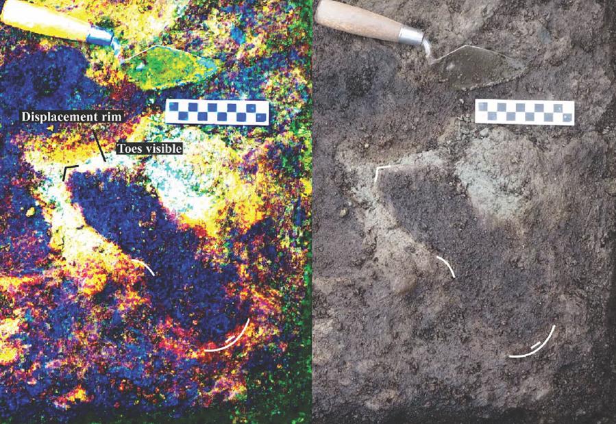 Археологи обнаружили отпечатки ног людей в отложениях возрастом 13000 лет на канадском пляже - 2