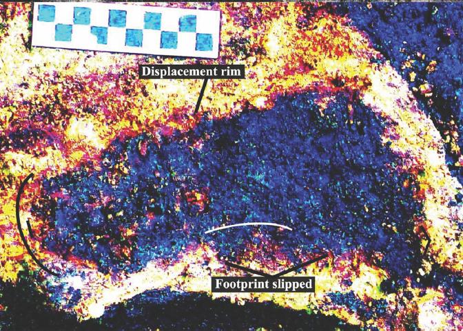 Археологи обнаружили отпечатки ног людей в отложениях возрастом 13000 лет на канадском пляже - 1