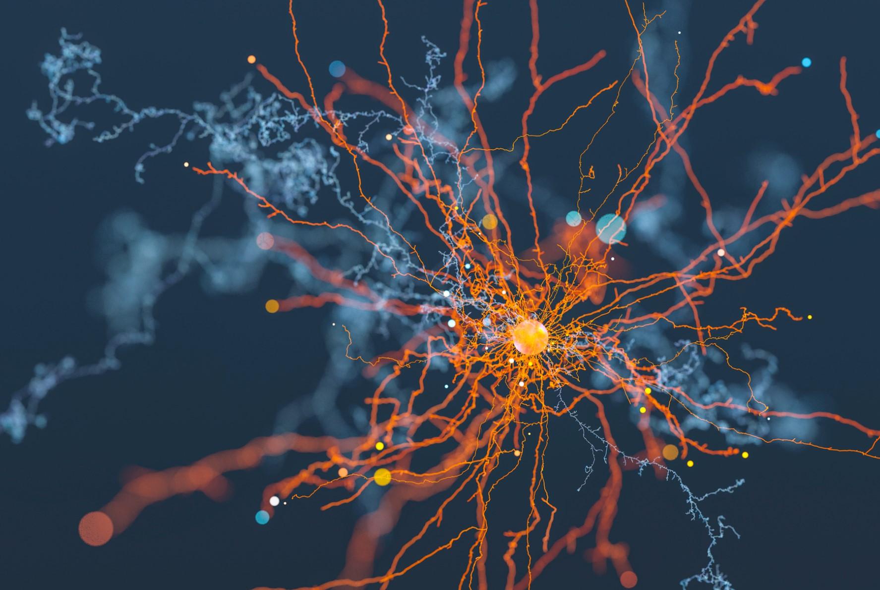 Учёные запишут данные с 1 миллиона нейронов в реальном времени - 1