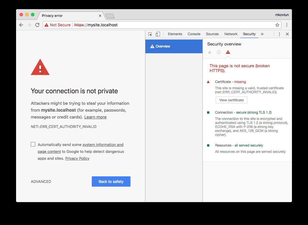 Как выпустить самоподписанный SSL сертификат и заставить ваш браузер доверять ему - 3
