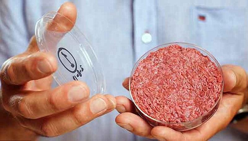 Пища недалекого будущего. Как готовят мясо из пробирки и почему мы все скоро будем его есть - 1