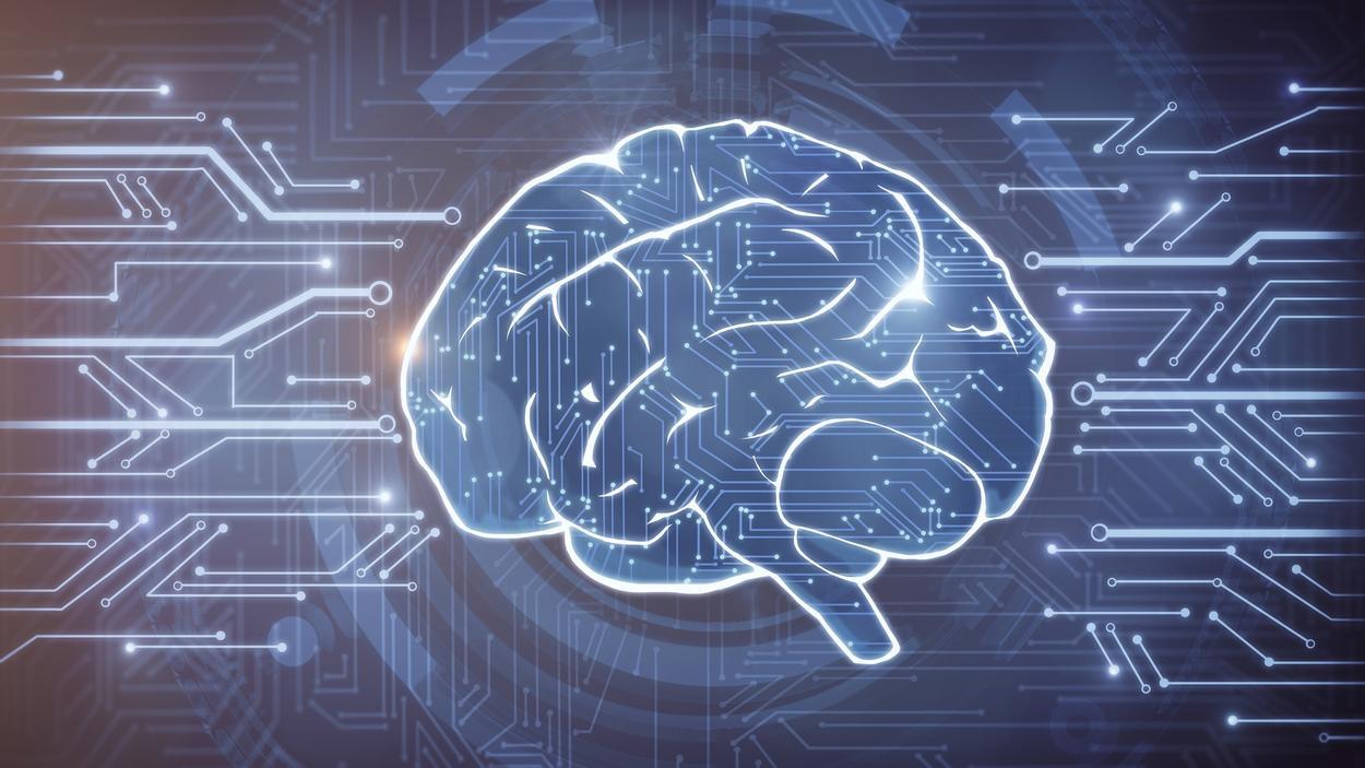 Оцифровка замороженного мозга — нюансы и проблемы технологии - 1