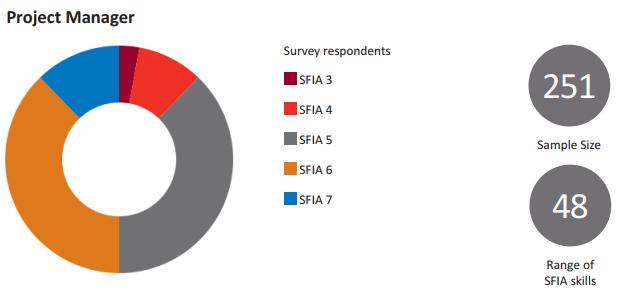 Оценка человеческого капитала ИТ-компании с использованием критериев SFIA - 8