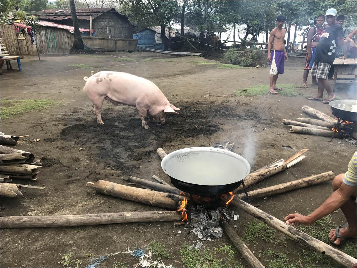 Филиппины: как на малых островах живут люди, которым не особо нужны современные технологии - 4