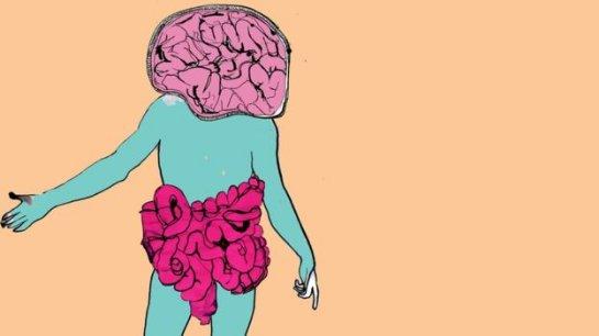 Более половины вашего тела не является «человеческим»