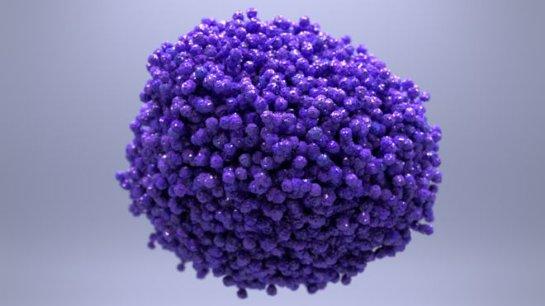 Ученые говорят о «плохих» и «хороших» видах рака