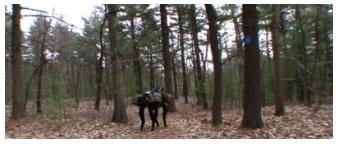 Как Boston Dynamics сделала BigDog автономным - 8