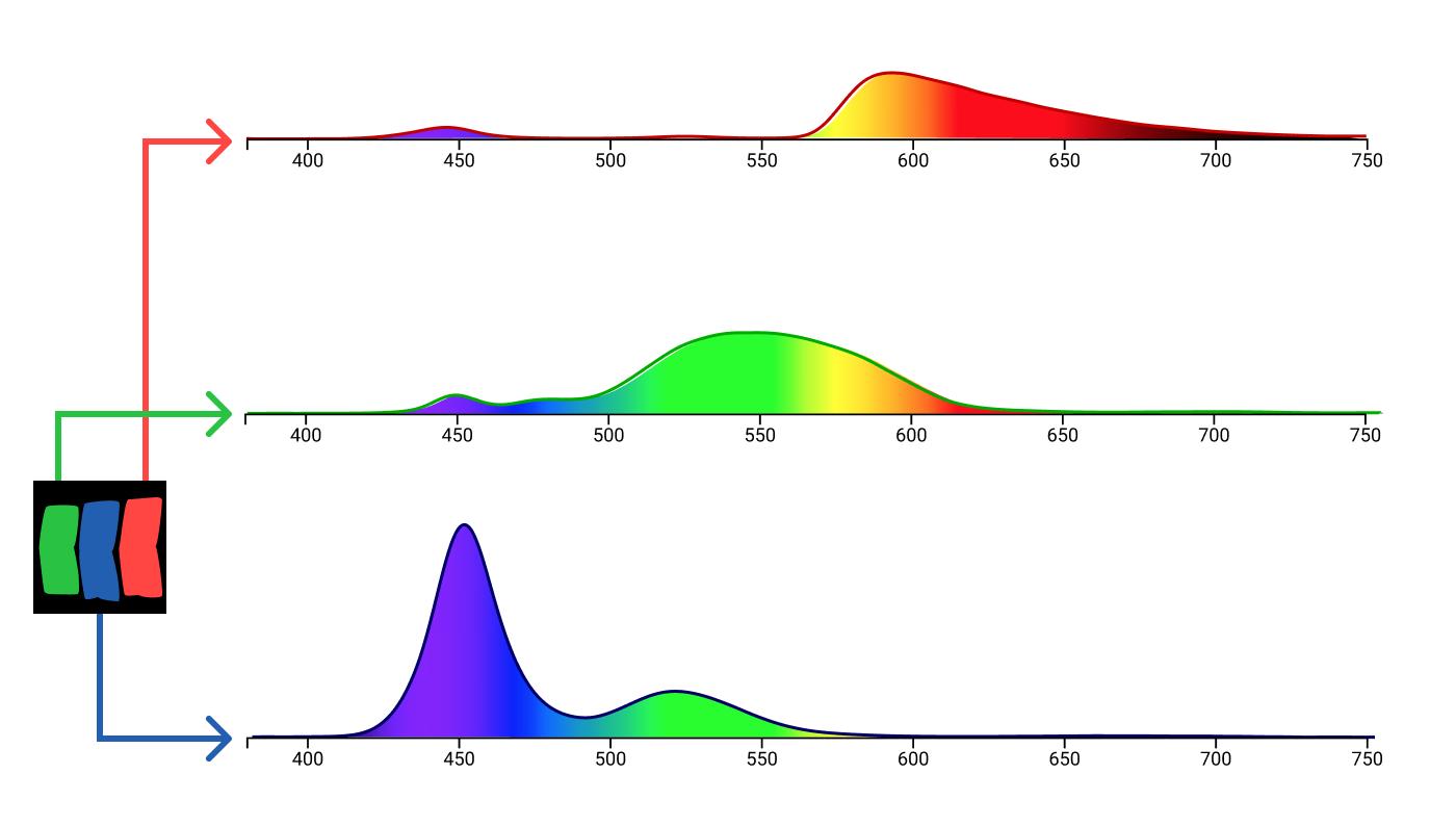 Цвет: от шестнадцатеричных кодов до глаза - 86