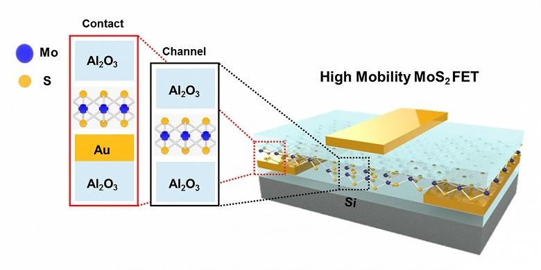 Создан гибкий прозрачный транзистор на основе дисульфда молибдена