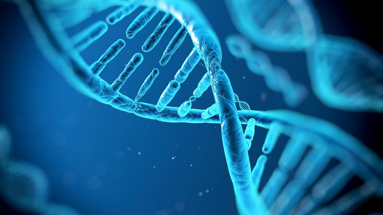 «Убийцу из Золотого штата» нашли при помощи сервиса анализа ДНК - 1