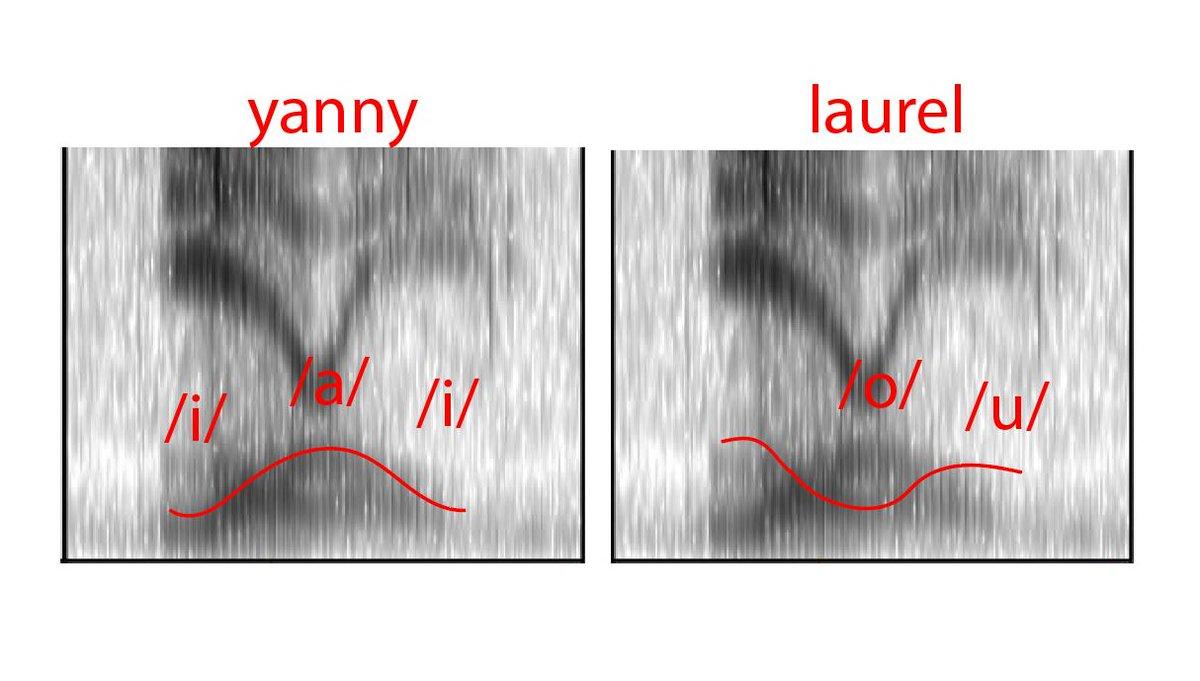 Laurel-Yanny: аудиоверсия сине-золотого платья - 3