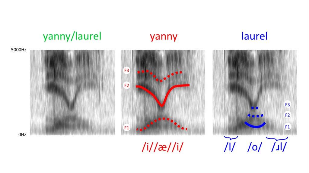 Laurel-Yanny: аудиоверсия сине-золотого платья - 5