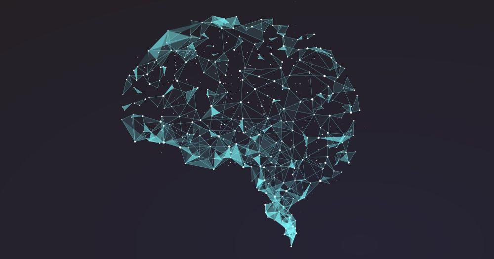 Мозг цепляется за старые привычки при изучении новых трюков - 1