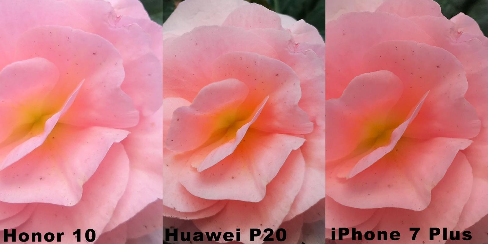 Как фотографирует новый Honor 10. Сравниваем с Huawei P20 и iPhone 7 Plus - 20