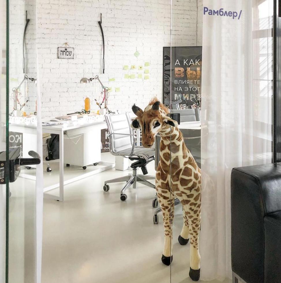А еще у нас есть жираф - 1