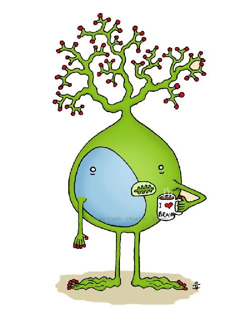 IGNG — инкрементальный алгоритм растущего нейронного газа - 1