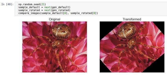 AI, практический курс. Предобработка и дополнение данных с изображениями - 14
