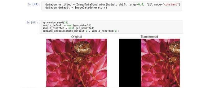 AI, практический курс. Предобработка и дополнение данных с изображениями - 16
