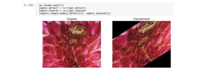 AI, практический курс. Предобработка и дополнение данных с изображениями - 19