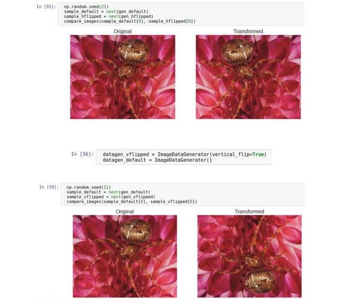 AI, практический курс. Предобработка и дополнение данных с изображениями - 22