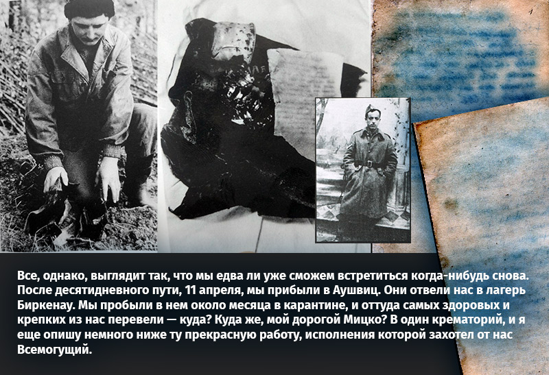 Как нам удалось прочитать рукопись, найденную в 80-х возле третьего крематория в Аушвице-Биркенау - 1