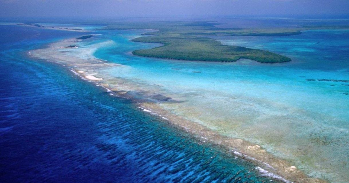 В Белизе спасли от разрушения коралловые рифы