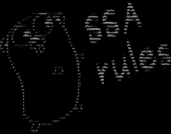 Компилятор Go: язык описания правил SSA оптимизаций - 1