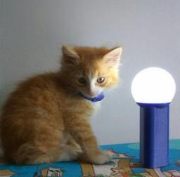 Аналоговый походный фонарь - 1