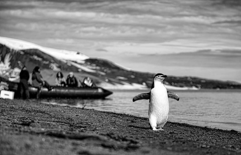Linux kernel 4.18: что готовит грядущий релиз - 2