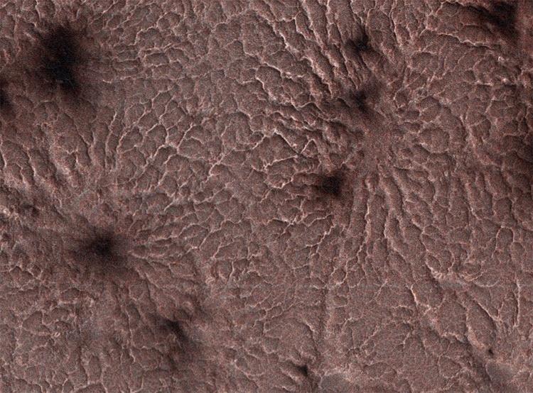 Фото дня: «пауки» на поверхности Марса