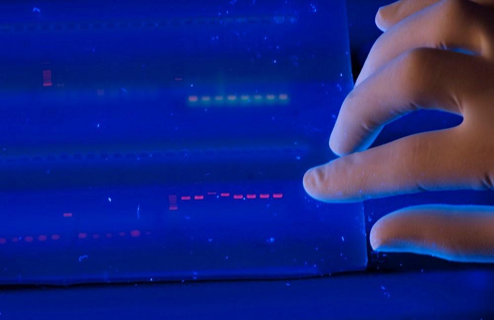 «Массовый продукт»: первое коммерческое ДНК-хранилище представят в 2019 году - 1
