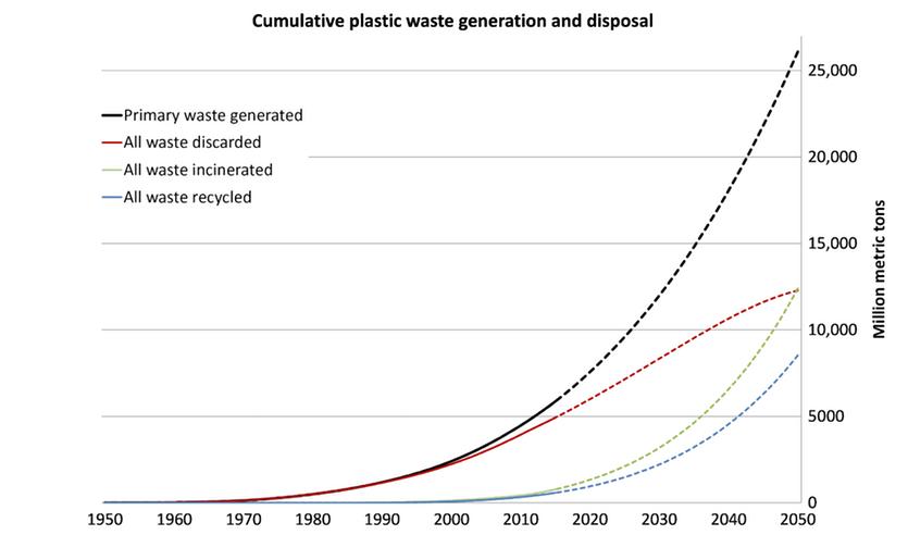 В Новой Зеландии запрещают пластиковые пакеты - 2