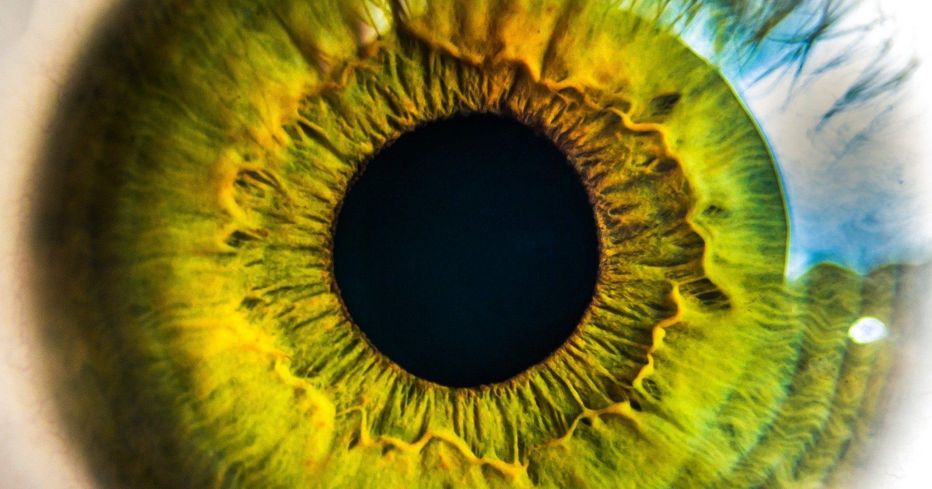Искусственные сетчатки из графена: средство от слепоты