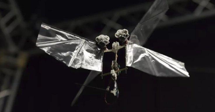 Nimble: робот, который летает как настоящее насекомое