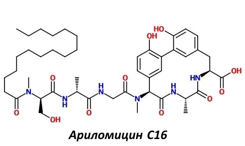 Впервые за 50 лет разработан новый класс антибиотиков, действующих на грамотрицательные бактерии - 3
