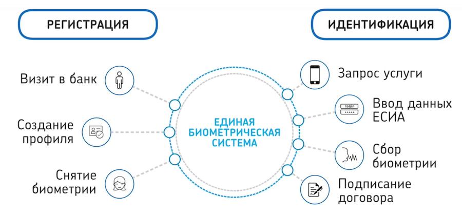 Как работает Единая биометрическая система - 1