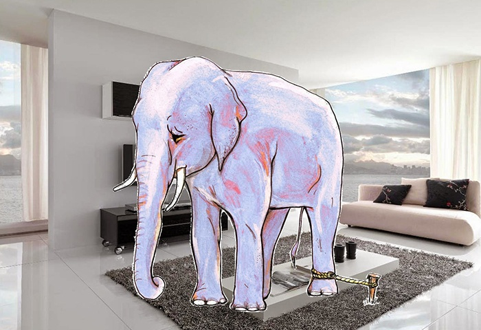Машинное обучение: схватка с комнатным слоном - 1