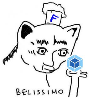 Кот-фронтендер смотрит на webpack и говорит 'Белиссимо'
