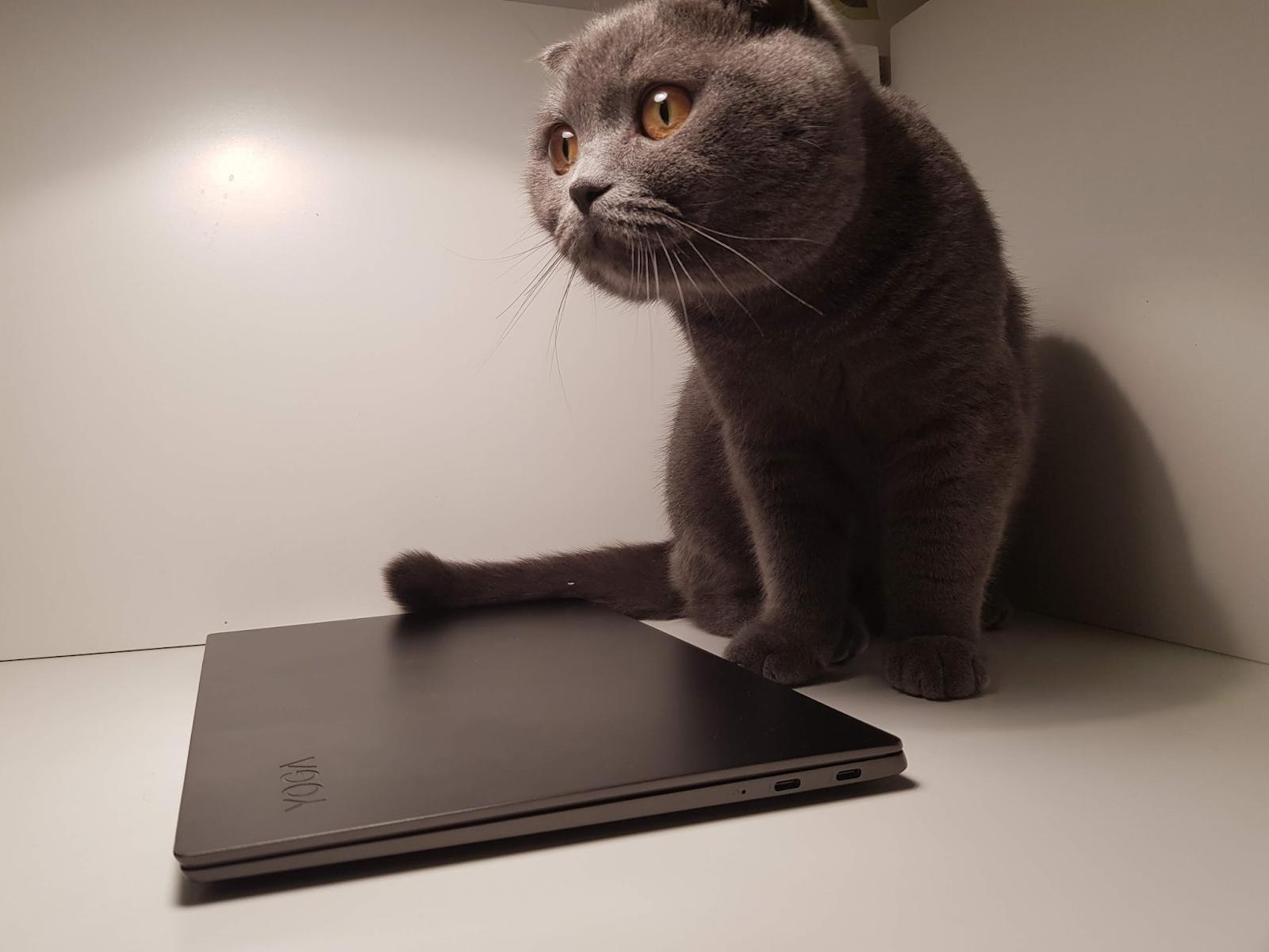 Обзор ноутбука Lenovo S730-13 (2018): мощное железо в стильном алюминиевом корпусе - 1