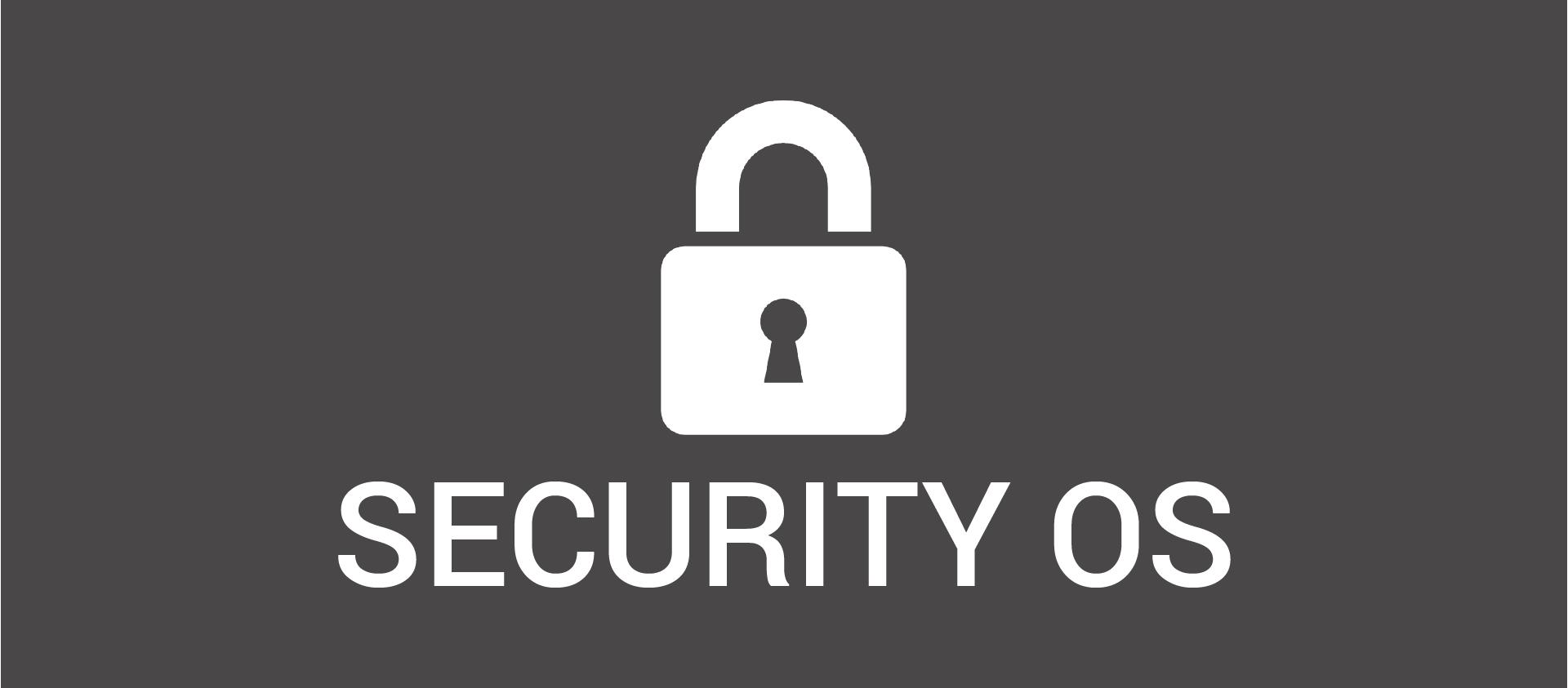 Лучшая OS для безопасности: сравнение титанов - 1